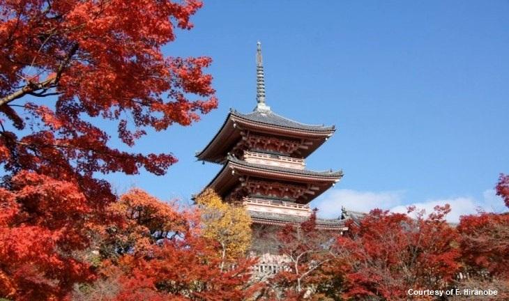 KiyomizuDera, Kyoto, Japan
